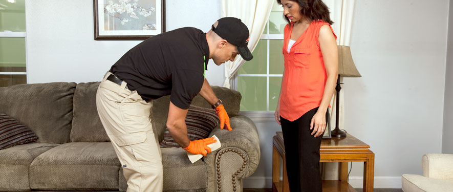 Morehead, KY carpet upholstery cleaning